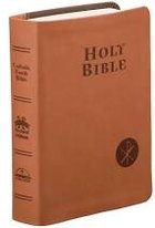 Fireside Catholic Youth Bible, gift ed., brown leather